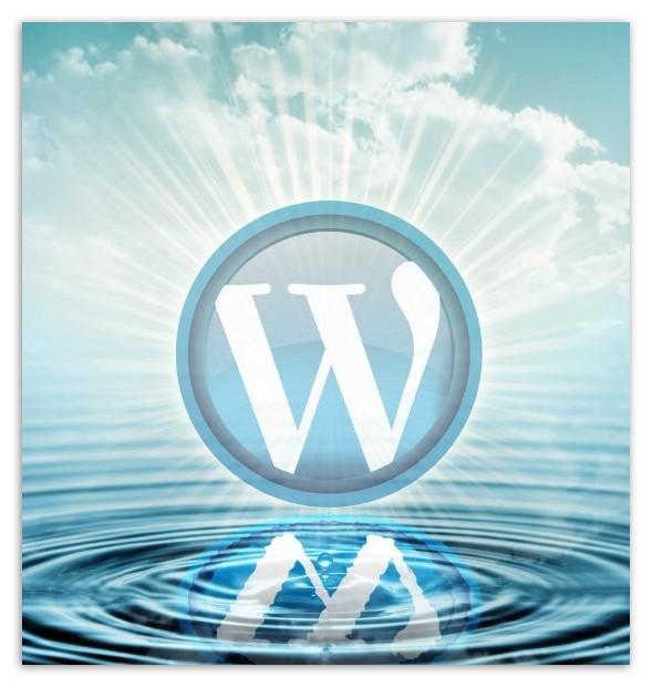 WordPress调用函数大全